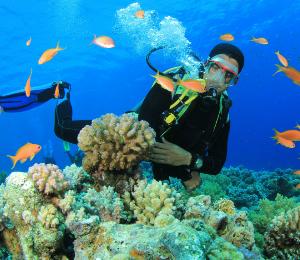 Grand Bahama Scuba Dive