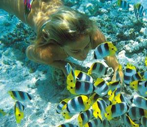 Grand Bahama Specialty Dive Trips